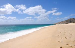 Las Mejores Actividades en Cabo San Lucas